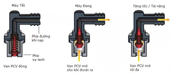 Hoạt động van PCV